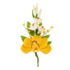 Australian Cymbidium Hyacinth Spray - Yellow