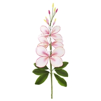 Gaura Orchid Spray - White With Pink Shading