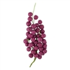 Grape Bunch With Leaves - Wine Red
