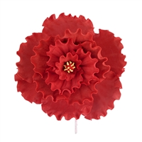 Chinese Double Rose - Red