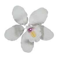 Large Cymbidium Orchid Blossom - White With Lavender