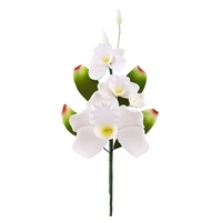 Cymbidium Orchid Spray - White - 3 Blossoms