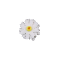 Medium Gerbera Daisy - White