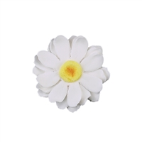 Large Gerbera Daisy - White