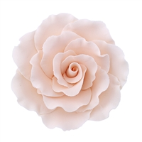 XXL Gum Paste Formal Rose - Cream