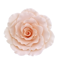 XXL Gum Paste Formal Rose - Peach