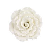 XXL Gum Paste Formal Rose - White