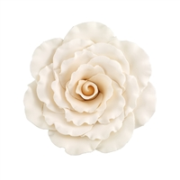 Jumbo Gum Paste Formal Rose - Cream