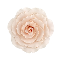 Jumbo Gum Paste Formal Rose - Peach