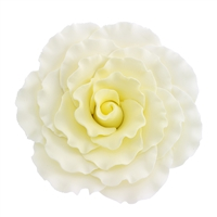 Jumbo Gum Paste Formal Rose - Yellow