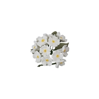 Small Gum Paste Hydrangea Bunch - White
