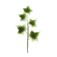 5 Leaf Gum Paste Ivy Leaf Spray  - Moss With Light Edging