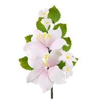 Gum Paste Lily Spray - White