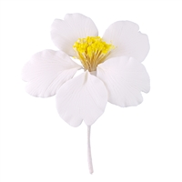 Medium Gum Paste Camellia Blossom - White With Yellow Stamens