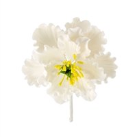 XL Gum Paste Peony Blossom - White With Yellow And Green Center