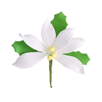 Medium Gum Paste Poinsettia - White