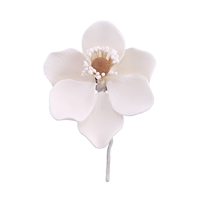 Gum Paste Poppy Anemone - White