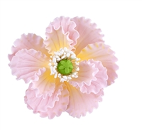 Gum Paste Summer Poppy - Pink