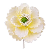 Gum Paste Summer Poppy - White
