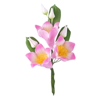 Gum Paste Star Lily Spray - Assorted Colors