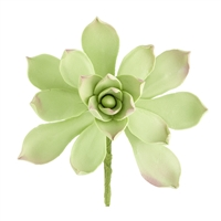Gum Paste Succulent - Light Green