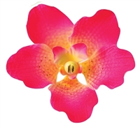 Gum Paste Vanda Orchid - Hot Pink