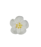 Small Royal Icing Wild Rose - White