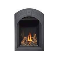 Napoleon Park Avenue Direct Vent Gas Fireplace