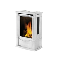 The Napoleon Castlemore Direct Vent Gas Stove
