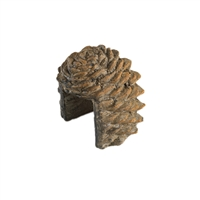Pine Cone Decorative Cover