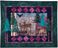 Forest Shadows - Pattern only, cover no longer available