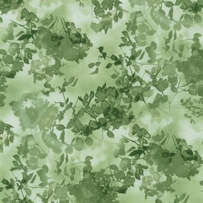 Cyanotype leaves and flowers in grass and olive green.