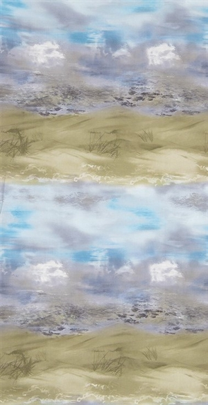 Daytime beach screenprint shows sandy beach and rolling waves.