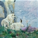 fabric panel with mountain goats lounging on the grass