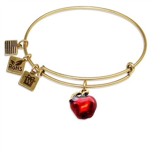 Red Apple Charm Bangle in Gold