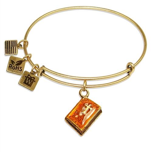 Holy Bible Charm Bangle in Gold