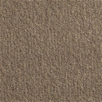 "El Dorado Cutpile Carpet Unbacked 80"" 8655 Medium Mocha"