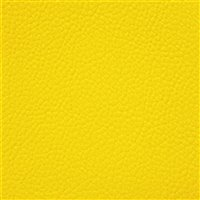 Allsport Nu Bright Yellow