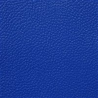Allsport Royal Blue