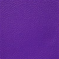 Allsport Bright Violet
