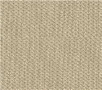 2335 Lt. Neutral Knit Headliner