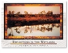 Reflections in the Wetlands - Standard Postcard  AOB-032