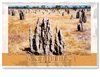 Anthills - Large Postcard  AOBL-043