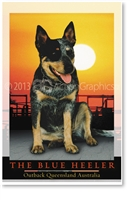 The Blue Heeler - Small Magnets  AOBM-150