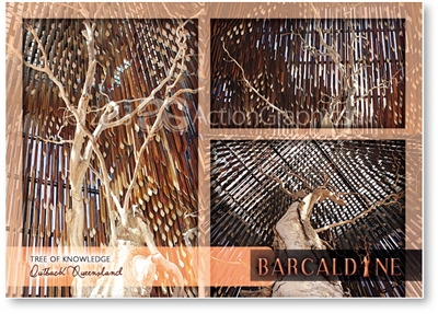 Tree of Knowledge - Standard Postcard  BAR-004