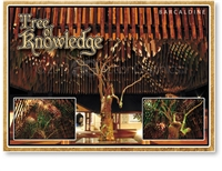Tree of Knowledge - Standard Postcard  BAR-010