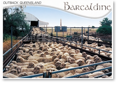 Barcaldine Outback Queensland - DISCOUNTED Standard Postcard  BAR-222