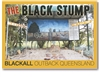 The Black Stump - Standard Postcard  BLA-005