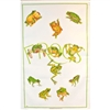 FROGS 99 Cotton/Linen Tea Towel - C709