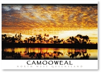 Camooweal North West Queensland - Standard Postcard  CAM-133
